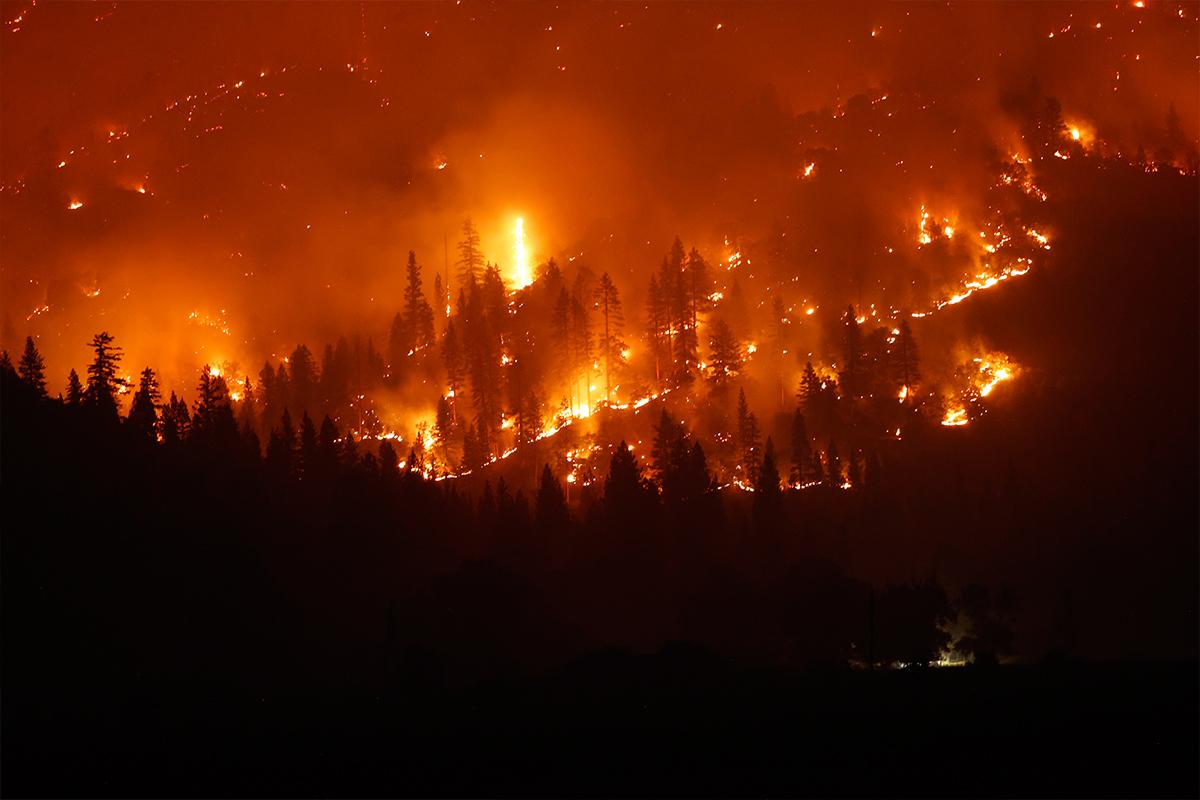 California'nın en büyük ikinci yangını 705 bin dönümlük alanı küle çevirdi