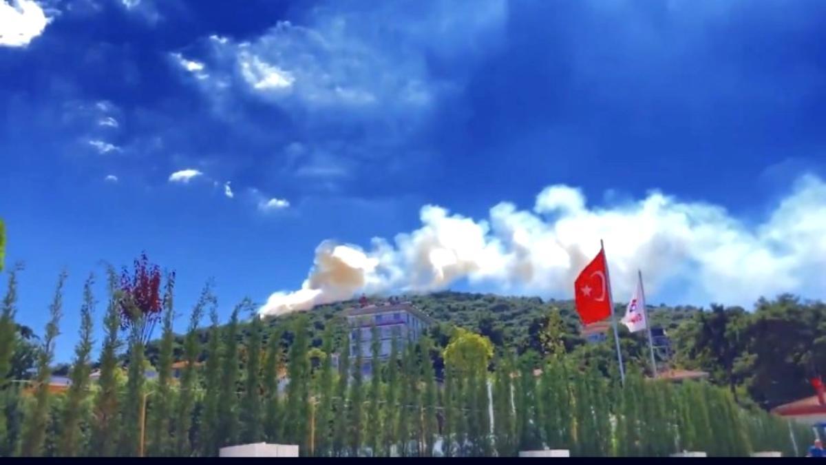 Heybeliada da ormanlık alanda yangın çıktı