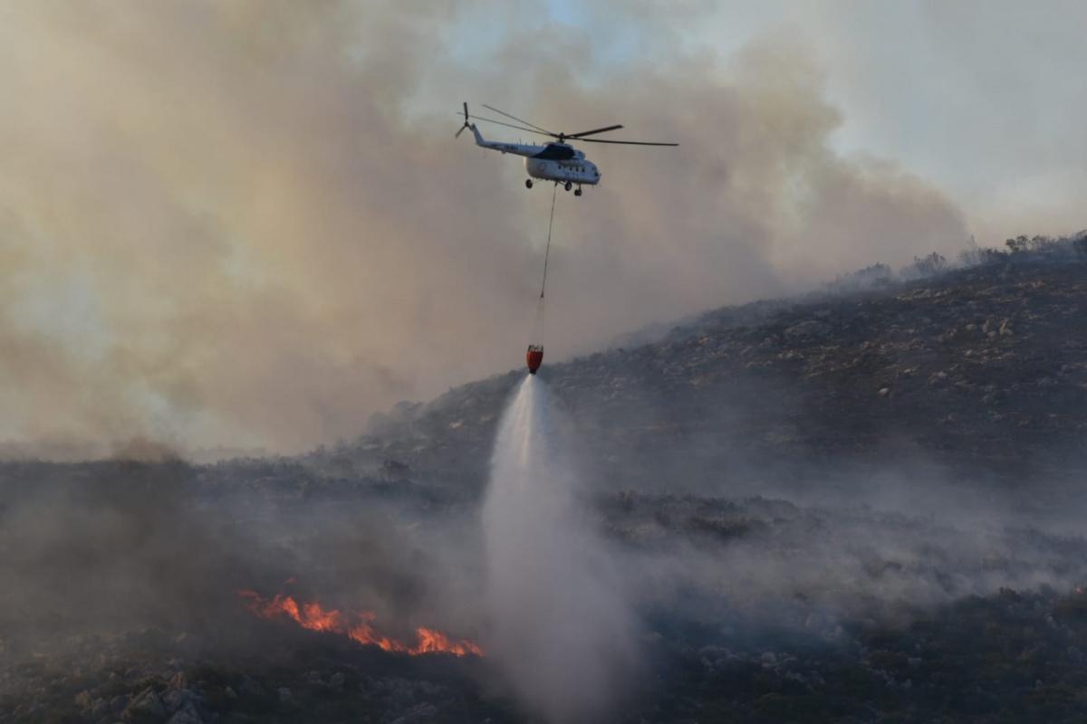 İzmir'deki orman yangınları kontrol altında
