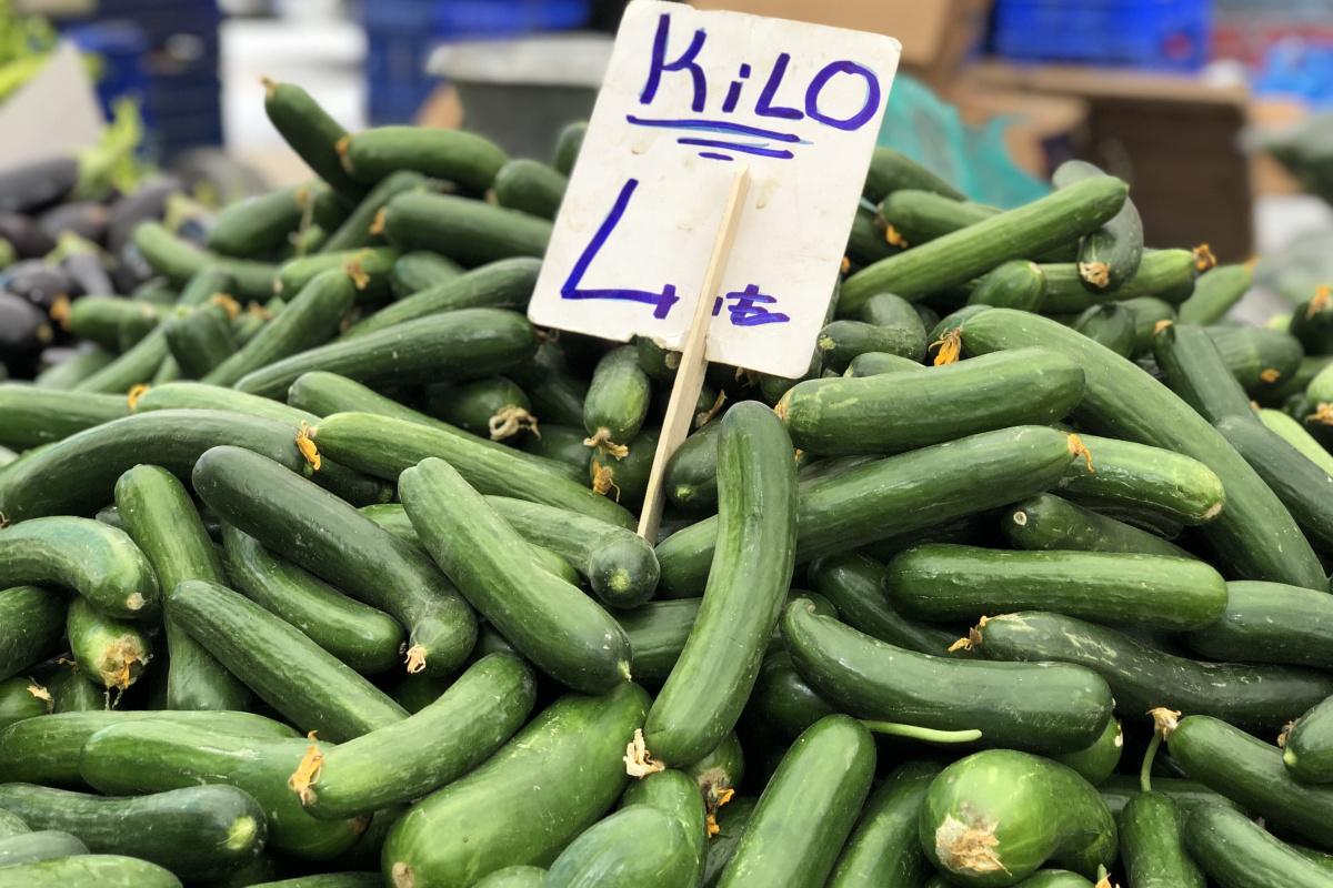 Ağustos'ta fiyatı en çok artan ürün olan salatalık 4 liradan alıcı buluyor